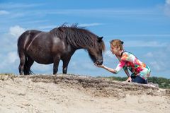 Woman on knees feeding black pony Stock Image