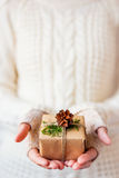 Woman in knitted sweater holding a present with pine cone. Stock Image