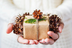 Woman in knitted sweater holding a present and pine cones. Royalty Free Stock Image
