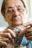Woman knitting royalty free stock image