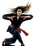 Woman Kung Fu Pencak Silat isolated royalty free stock photos