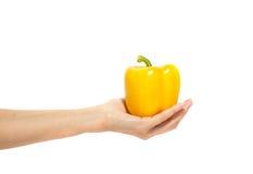 Woman& x27 ; la main de s juge le poivron doux jaune d'isolement sur le blanc Photos libres de droits