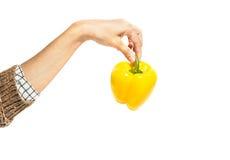 Woman& x27 ; la main de s juge le poivron doux jaune d'isolement sur le blanc Photographie stock