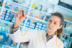 Woman laboratory assistant draws a graph on a glass Royalty Free Stock Images