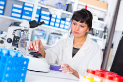 Woman in a laboratory with microtube test tube  in hand and PCR Royalty Free Stock Image