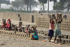 Woman Labour In Indian Brick-field Stock Image
