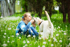 Woman with labrador Royalty Free Stock Image