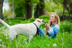 Woman with labrador Stock Photos