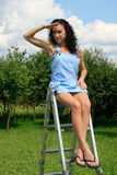 Woman on a ladder in garden Stock Image
