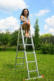 Woman on a ladder in garden Stock Images