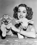 Woman with lamb and lion cub Stock Image