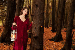 Woman lantern woods Stock Photography