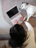 Woman Laptop Dog Stock Image