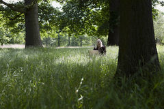 Woman With Laptop In Meadow Royalty Free Stock Images