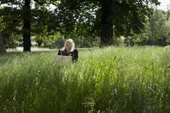 Woman With Laptop In Meadow Stock Photo