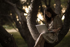 Woman with Laptop on a Tree Stock Images