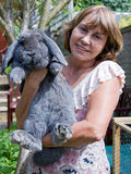 Woman and large rabbit Stock Image