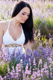 Woman in lavender Royalty Free Stock Image