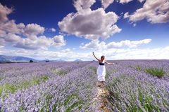 Woman on lavender field Royalty Free Stock Photos