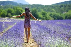 Woman on a lavender field Royalty Free Stock Photo