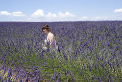 Woman in lavender field Royalty Free Stock Images
