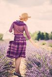 Woman in lavender field Royalty Free Stock Image