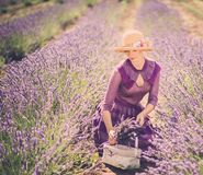 Woman in lavender field Royalty Free Stock Photography