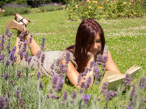 Woman in lavender. Young red woman reading a book lying on the grass Stock Photos