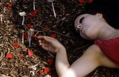 Woman Laying In The Forest Stock Images