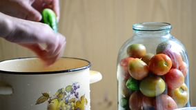 Woman lays tomatoes and cucumbers in jars. Home stock footage
