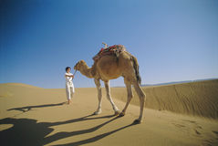 Woman leading camel across desert Stock Images