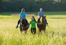 Woman Leading Two Horses with Boys Royalty Free Stock Photography