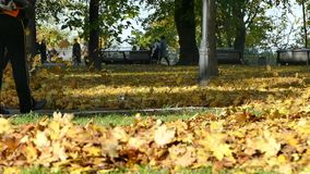 Woman With Leaf Blower In Kiev stock video footage