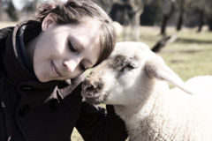 Woman leaning head on sweet lamb, light filters Stock Photo