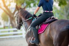 Woman learning to ride on a horse royalty free stock photography