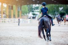 Woman learning to ride on a horse stock photography