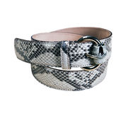 Woman leather belt Royalty Free Stock Image