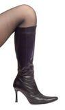 Woman Leg Stock Photo