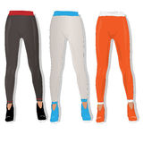 Woman leggings vector isolated. Stock Images