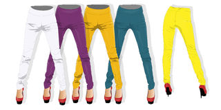 Woman leggings vector isolated. Stock Photography