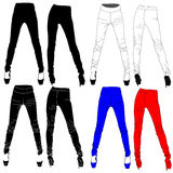 Woman leggings vector isolated. Royalty Free Stock Image