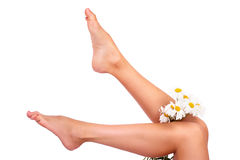 Woman legs Royalty Free Stock Image