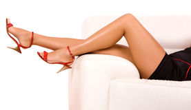 Woman legs Stock Photography