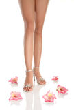 Woman Legs And Flowers Royalty Free Stock Images