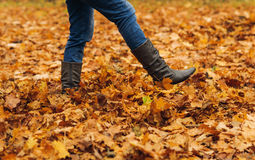 Woman legs on autumn leaves in forest Stock Photo