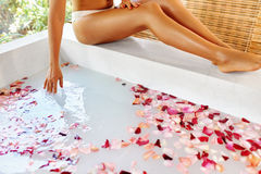 Woman Legs. Body Care. Rose Flower Bath. Spa Skin Treatment. Royalty Free Stock Photo