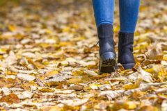 Woman legs in boots on autumn leaves Stock Image