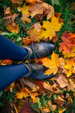 Woman legs in boots on fallen autumn leaves Stock Image