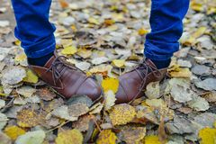 Woman legs in brown shoes against autumn leaves background Royalty Free Stock Images