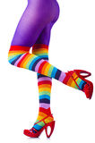 Woman legs in colourful stockings Stock Image